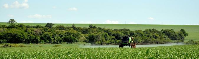 Cereales y semillas oleaginosas: el calor en EEUU y Canadá está haciendo subir los precios